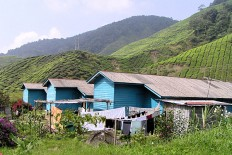 2-Cameron-Highlands-plantation-the